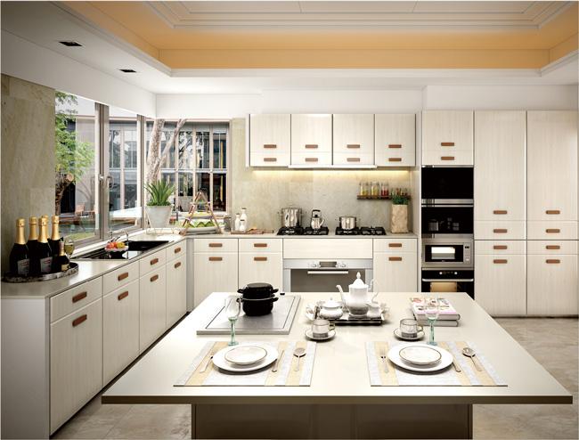 雪宝板材中国十大板材品牌怎么做电器嵌入式厨房设计方案?