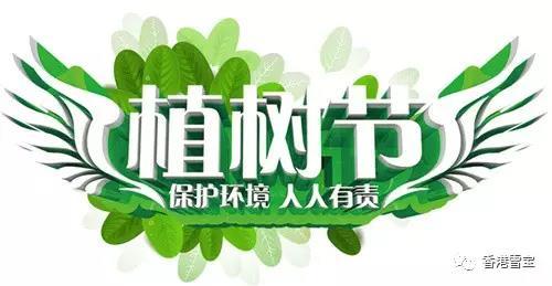 绿荫行动!雪宝板材绿荫植树节,与万人一同拥抱春天!
