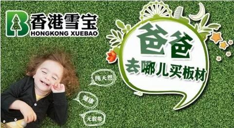 中国十大板材名牌