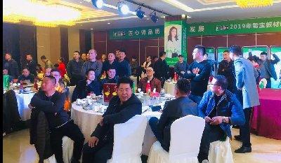 香港雪宝板材中国十大板材品牌板材十大名牌雪宝滕州新品发布会